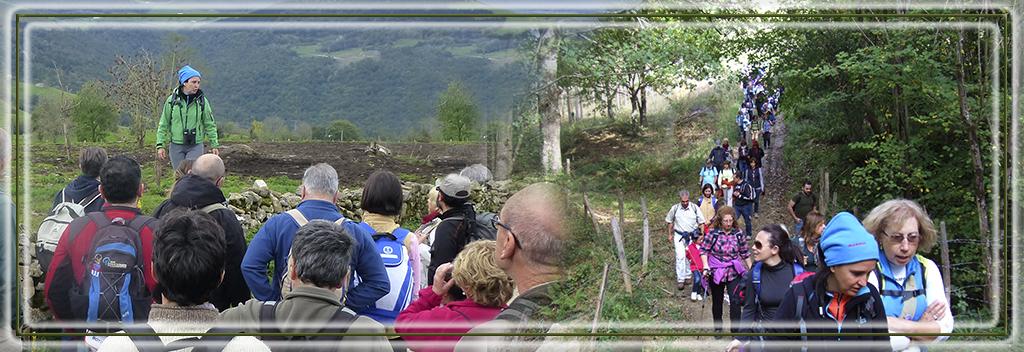 SALIDAS interpretativass asociación cultural bosques de cantabria