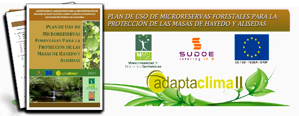 estudios técnicos 2C asociación cultural bosques de cantabria